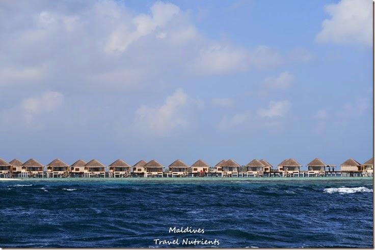 馬爾地夫居民島Mahibadhoo- Amazing Guesthouse (4)