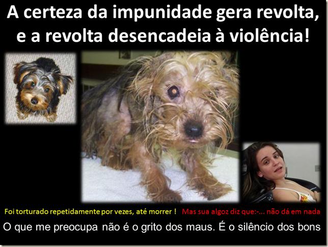 impunidade_camilla