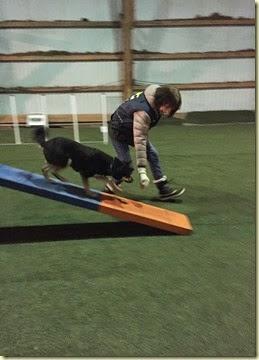 150310 Liisa agility 4