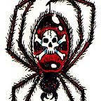 spider-37.jpg