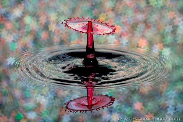 liquid-drop-art-gotas-caindo-foto-velocidade-hora-certa-desbaratinando (11)