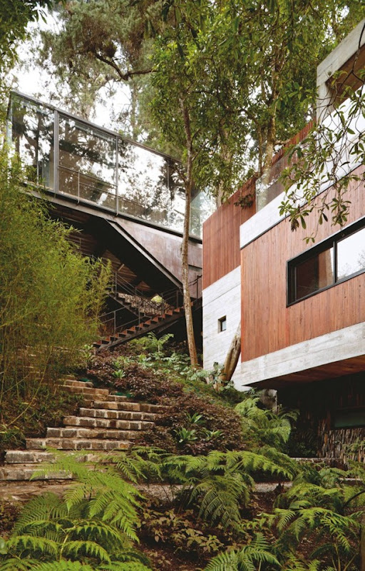 corallo house by paz arquitectura 8
