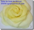 Rosa-de-biscuit-11
