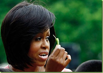 michelle-obama-white-house-garden-k-365ds061709