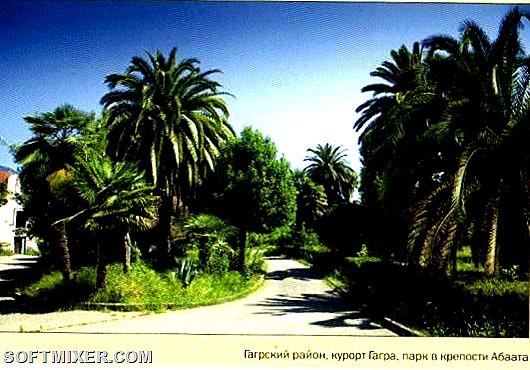 Абхазия Курорты Гагра 2009 Лев Толстой 4тыс -011