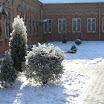 снежная зима 08-09 года (12).JPG