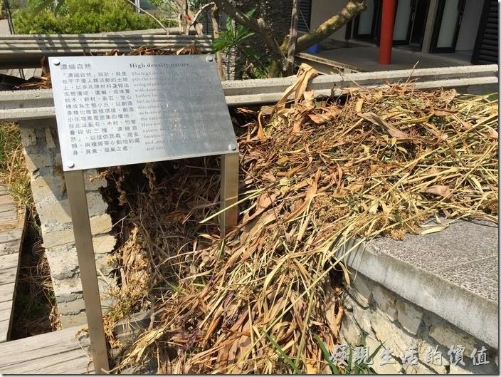 台南成功大學(力行校區)綠色魔法學校27