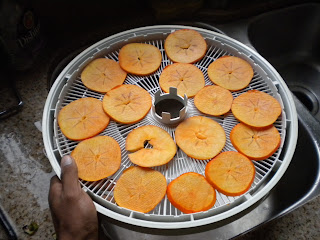 Let the dehydrator run for about 6 hours at 110 degrees
