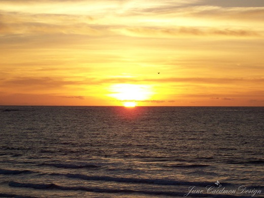 Sunset_Pacific
