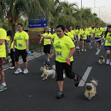 Pet Express Doggie Run 2012 Philippines. Jpg (91).JPG