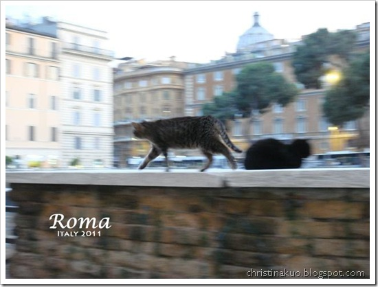 Rome day3 (68)