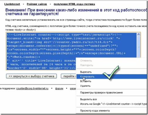 Ustanavlivaem-schetchik-LiveInternet-16