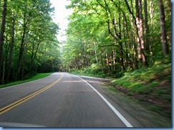 0257 Tennessee - Smoky Mountain National Park - US 441 (Newfound Gap Road)