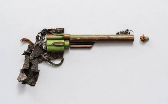 Armas de plantas (1)
