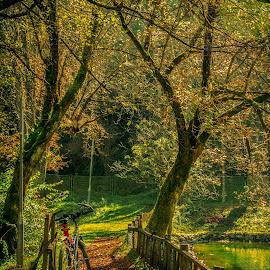 by Žana Popović - City,  Street & Park  City Parks ( water, nature, bicycle )