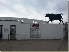 20121231_Bullfighting Ring (Small)