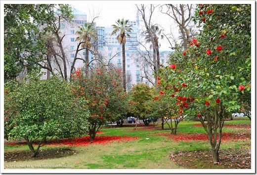 140302_Sacto_Capitol_Park_038