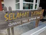 Welcome to Mulu National Park (copyright Dan Quinn / Royal Geographical Society (with IBG) September 2014)