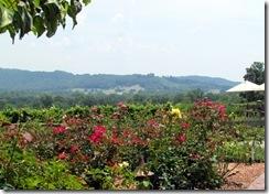 Rose Garden at Raffaldini's