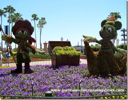 Flower and Garden Festival (6)