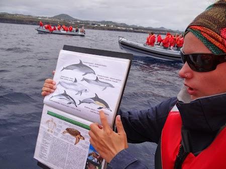 09. Bioloaga ne explica care sunt speciile de delfini.JPG
