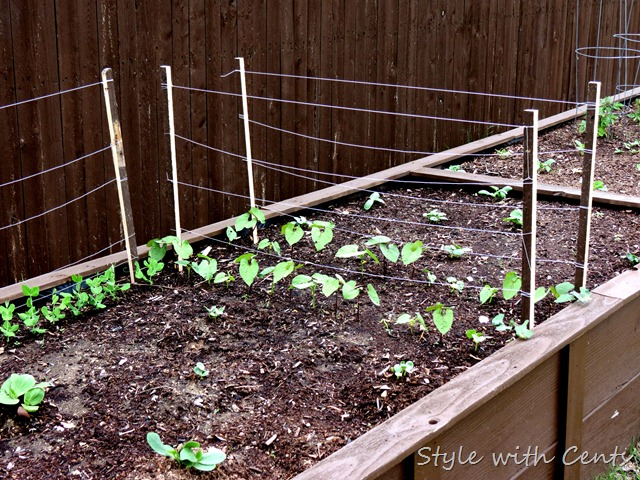 square foot gardening how to garden in a raised garden bed5