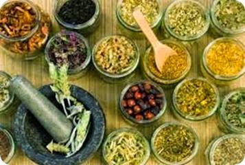 Pengembangan Obat Herbal untuk Sediaan Jamu