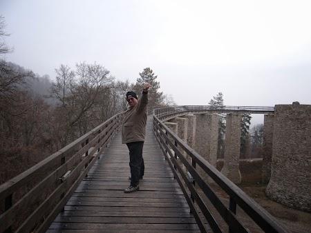 Podul de acces in Cetatea Neamtului