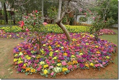 Garden in Jin Dian Temple 金殿區公園