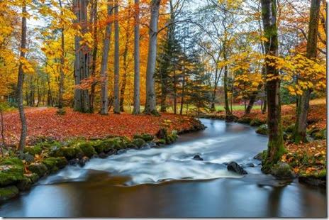 autumn-colors-fall-014