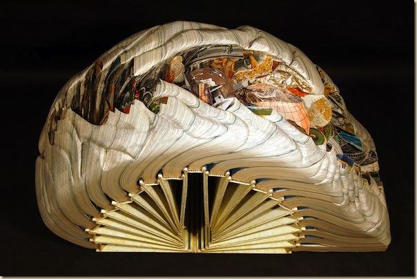 Brian Dettmer sculpteur de livres (9)
