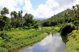 Lush and Tropical - Savusavu, Fiji