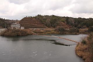 左岸よりダム湖と右岸を望む