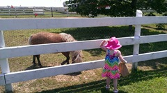 Bella 7.18.13 Plymouth farm feeding pony2