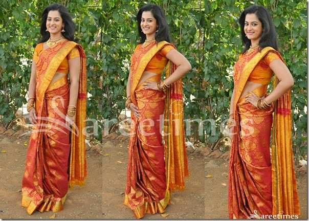 Nandita_Traditional_Silk_Saree