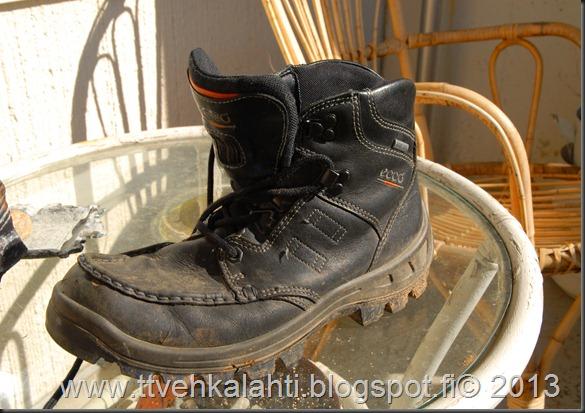 kengät sinivuokot muurahaisa 007