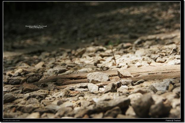 around bkk200