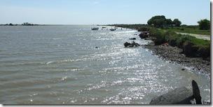 Presentación de Experiencias Piloto en la Bahía Samborombón