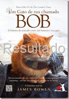 gato de rua chamado bob
