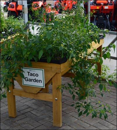 taco garden