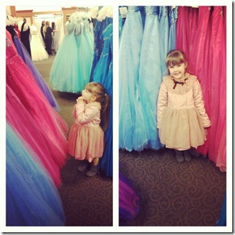 hayleigh and dresses