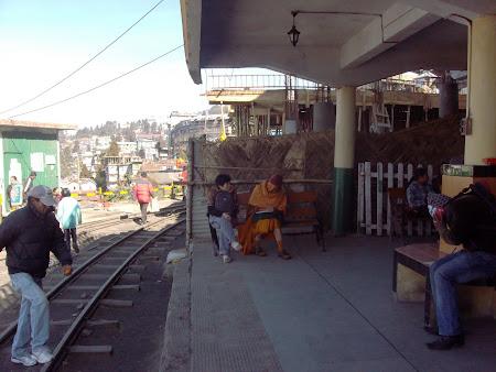 109. prietenii neasteptate in gara din Darjeeling.JPG