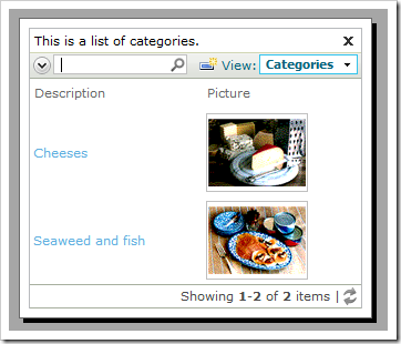 CategoryID field displaying two options.