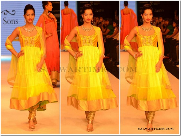 Designer_Salwar@_IIJW_2012 (1)