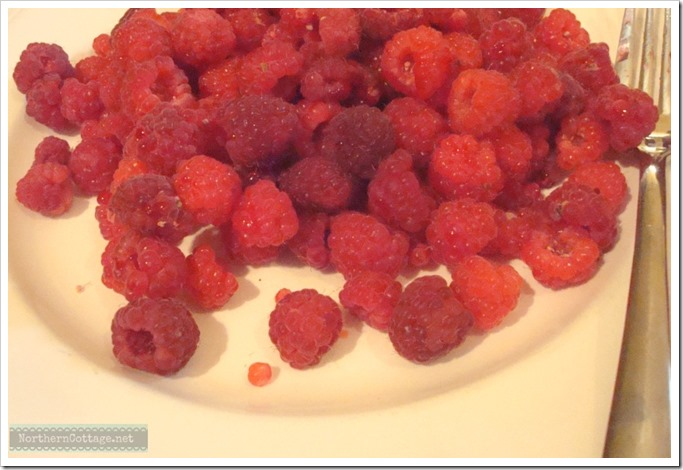 {Northern Cottage} raspberries for jam