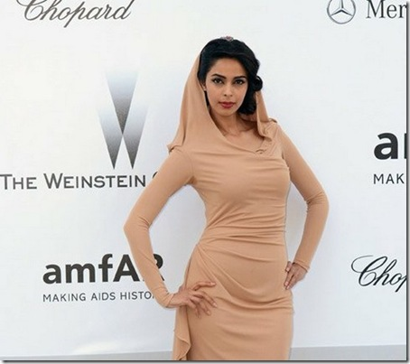 Mallika-Sherawat-Covers-Up-The-Cannes-Film-Festival-2012-1