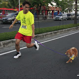 Pet Express Doggie Run 2012 Philippines. Jpg (48).JPG