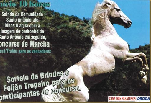 festa_cavalo2