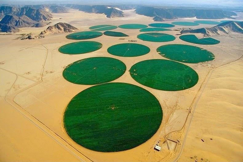 wadi-rum-farming-7