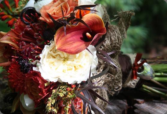 IMG_3210 flora fauna